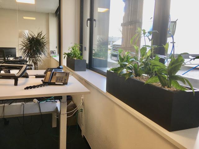 Plantenbakken of bloempotten in metaal hout cortenstaal kunststof plastic pvc steen beton urban riet bohemian jungle
