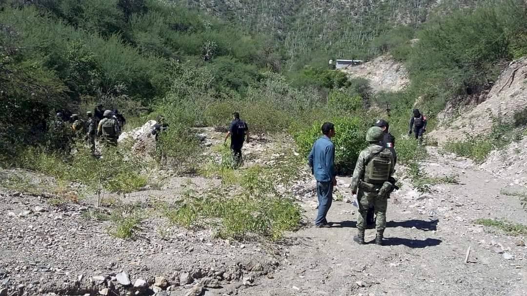 Asesinan a 6 integrantes de familia en Santa María Zoquitlán, Tlacolula en Oaxaca