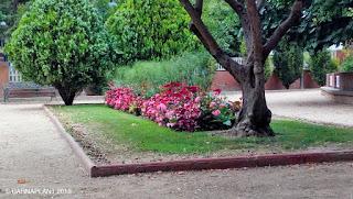 Soluciones Florales en el Rincón de Lucas Malla - Parque Miguel Servet Huesca