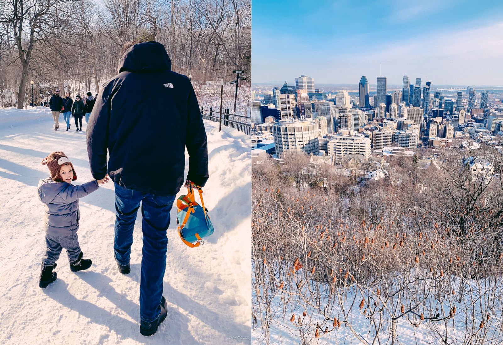 Mount Royal Outlook: Things To Do in Montreal, Canada