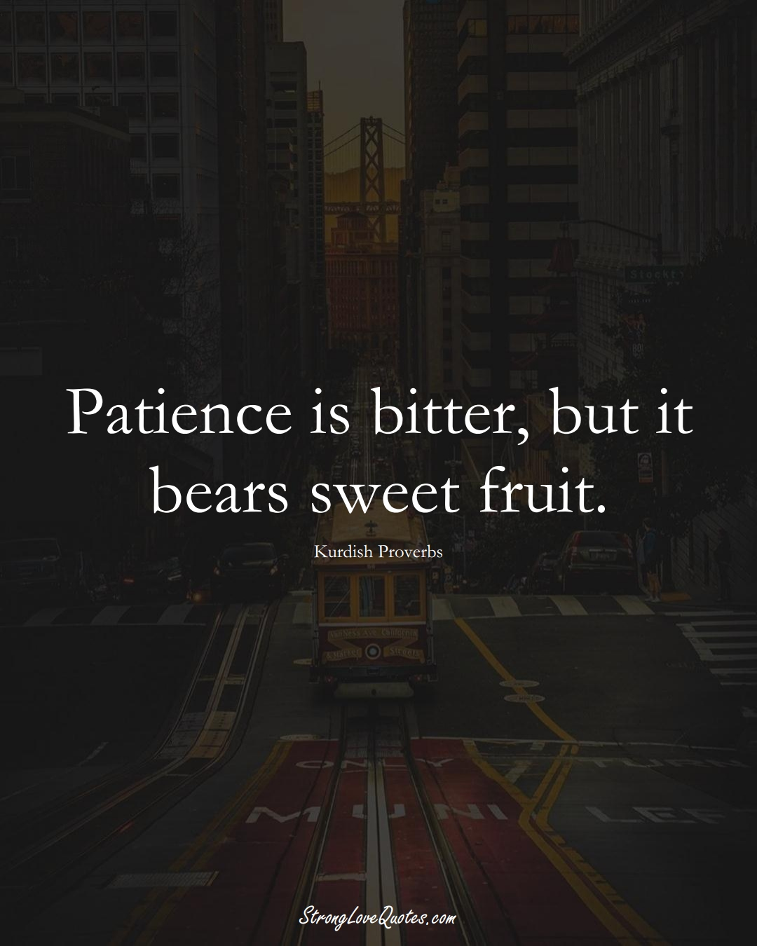 Patience is bitter, but it bears sweet fruit. (Kurdish Sayings);  #aVarietyofCulturesSayings