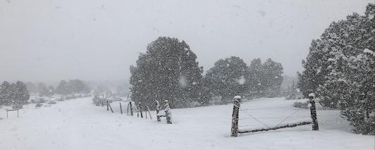 ©2021 Peter Miesler - snow storm
