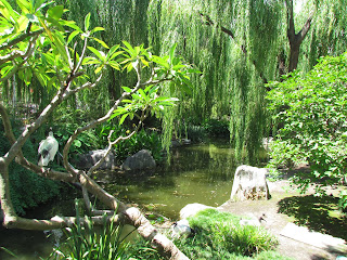 The Willow Stream