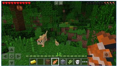 minecraft pocket edition apk mod