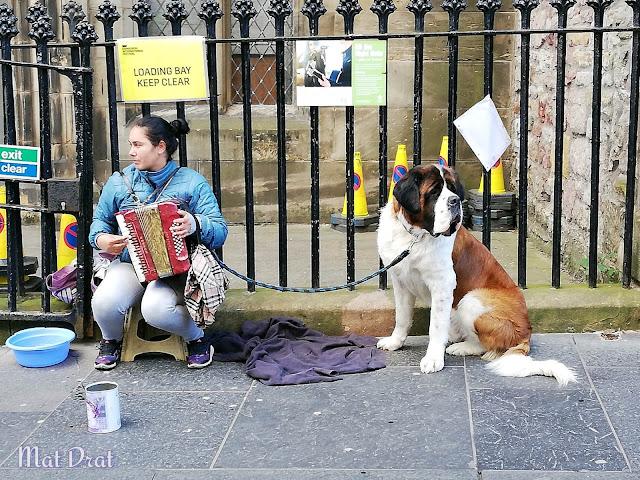 Edinburgh Castle Dog