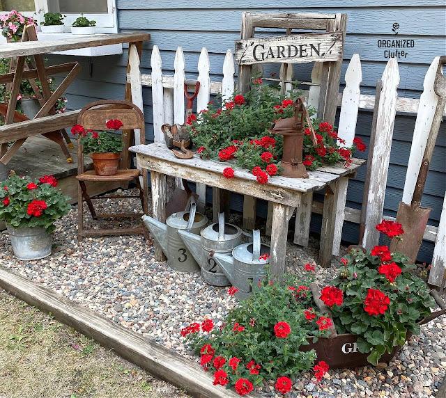 Foto de sucata de jardim e gerânios vermelhos ao longo da casa