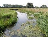 foto waterkwaliteit. Bron: www.stowa.nl