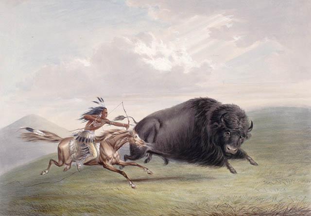 Cooper A préri bölényvadászat