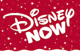 Disney Now on Roku