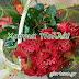 09 Νοεμβρίου  🌹🌹🌹 Σήμερα γιορτάζουν οι: Νεκτάριος,Νεκτάρης,Νεκταρία,Νεκταρίνα,Νεκταρούλα,Ελλάδιος,Ελλάδης,Θεόκτιστος,Θεοκτίστη,Μαύρος,Μαύρα,Μαυρούλα,Μαυρίτσα
