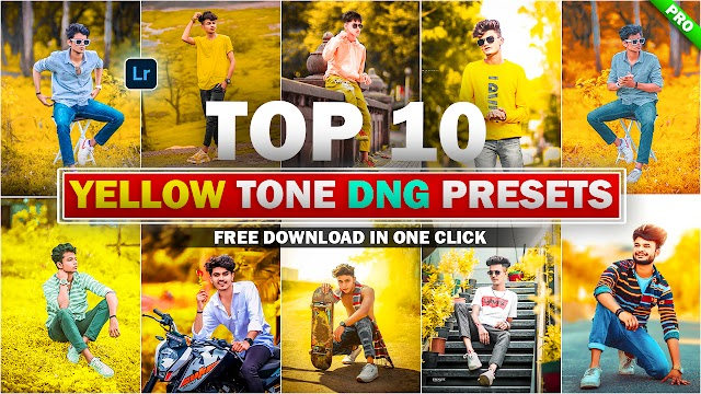 Download Top 10 Yellow Tone Lightroom DNG Presets In One Click By Deepak Creations