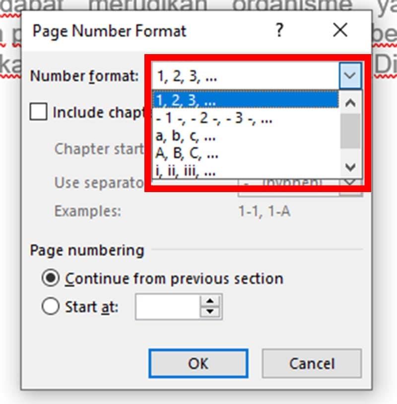 mengganti format nomor