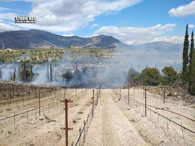 Πυρκαγιά στο Μαλαντρένι Αργολίδας