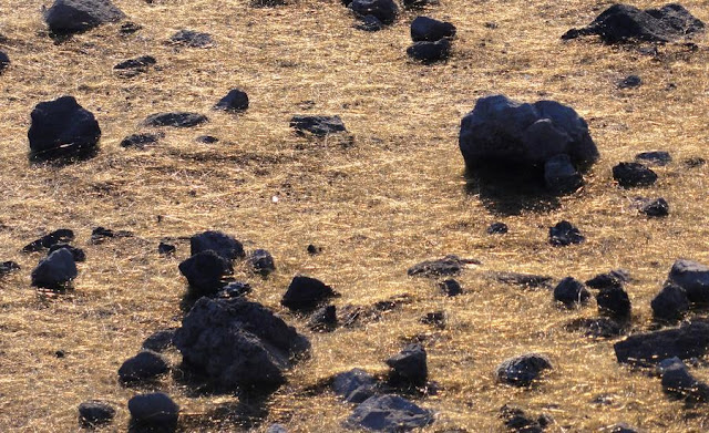Pele's hair is a form of lava