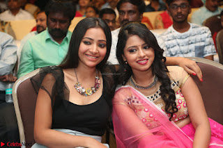 Geethanjali and Swetha Basu at Mixture Potlam Movie Audio Launch Feb 2017 011.JPG
