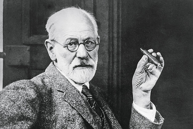 30 Frases de Freud - Território Deficiente