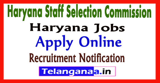 Haryana Staff Selection Commission HSSC Recruitment Notification 2017 Apply