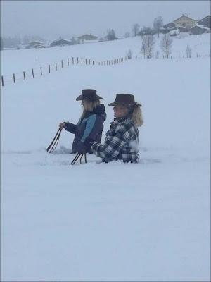 Im Winter mit Pferden reiten - Spaßbilder