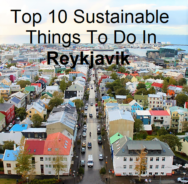 Green Living in Dubai: Top 10 Sustainable Things To Do in ...
