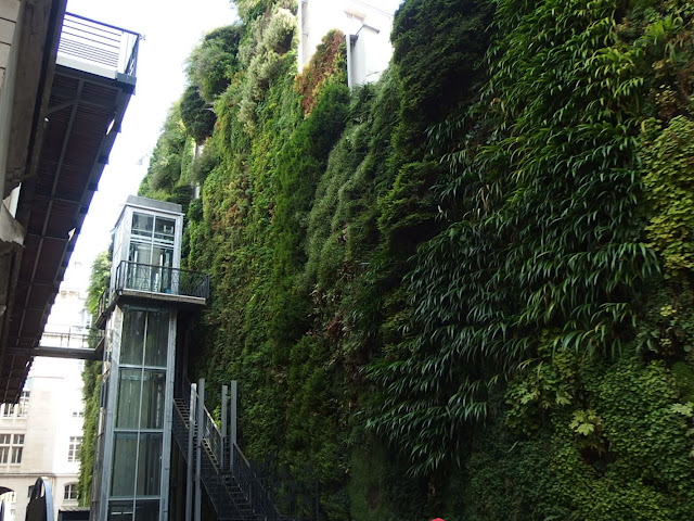 Patric Blanc's green wall on the Rue d'Alsace, Paris