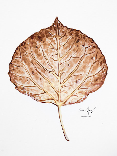 http://aaronspong.com/featured/aspen-leaf-brown-aaron-spong.html
