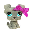 Littlest Pet Shop Collectible Pets Schnautzer (#1006) Pet