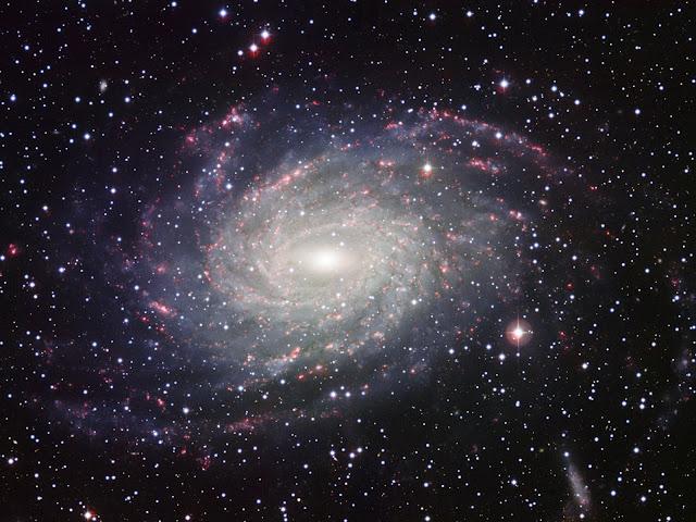 Hình ảnh toàn cảnh của thiên hà NGC 6744, một thiên hà lân cận và có dáng vẻ giống Ngân Hà của chúng ta với các cánh tay xoắn ốc. Hình ảnh: ESO.