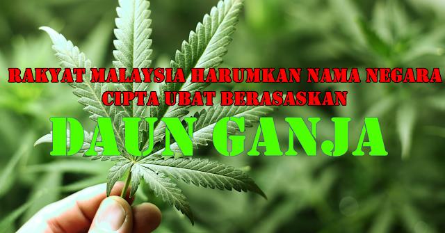 Rakyat Malaysia Harumkan Nama Negara Dengan Mencipta Ubat Berasaskan Daun Ganja