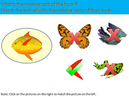 The Parts of the Body of Animals - Interactive Science Lesson Module