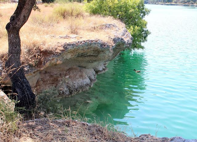 barreras tobáceas o travertínicas de las lagunas de Ruidera
