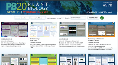 PlantBio20 online poster session