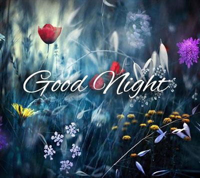 flower romantic good night images