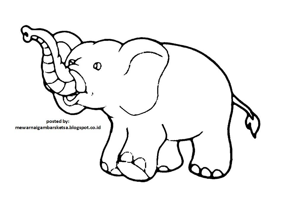 Populer 24 Mewarna Gajah