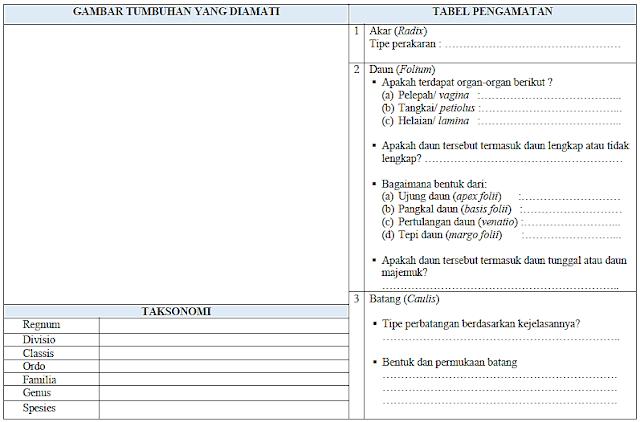 Praktikum Pembelajaran Biologi - DEWANTO