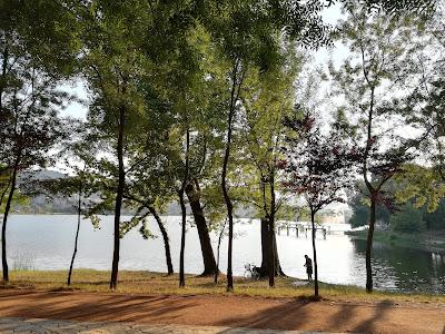 Parco sul lago, Tirana