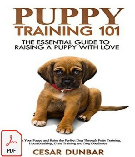 Puppy Training 101: The Essential Guide to Raising a Puppy With Love