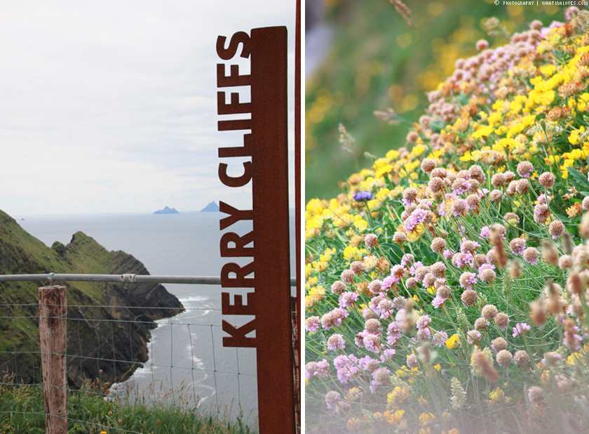Travelguide Ireland Kerry Cliffs  | whatinaloves.com