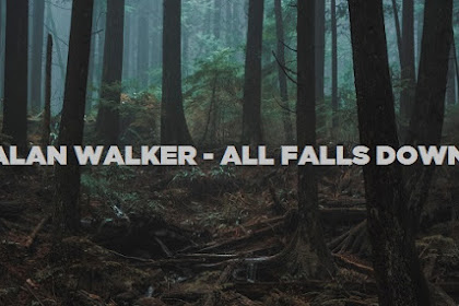 All Falls Down (MP3 Lyrics) Alan Walker ft Noah Cyrus