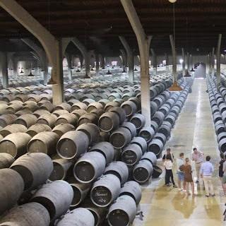 Los vinos en la provincia de Cádiz