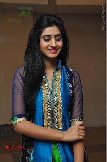 Actress Model Shamili Sounderajan Pos in Desginer Long Dress at Khwaaish Designer Exhibition Curtain Raiser  0011.JPG