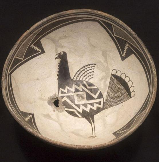 Turkeys were a major part of ancestral Pueblo life