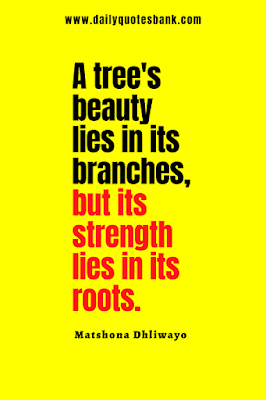 Read the roots quotes that will help always remember your roots, quotes about trees and roots.
