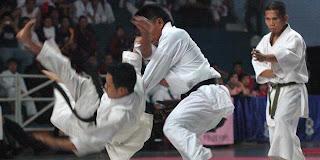 karate Alibasyah Cup IV