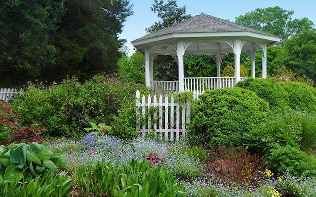 Mengasah Keterampilan Fotografi Taman Anda