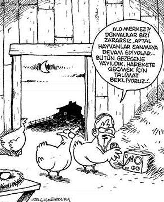 Uzaylı Tavuklar