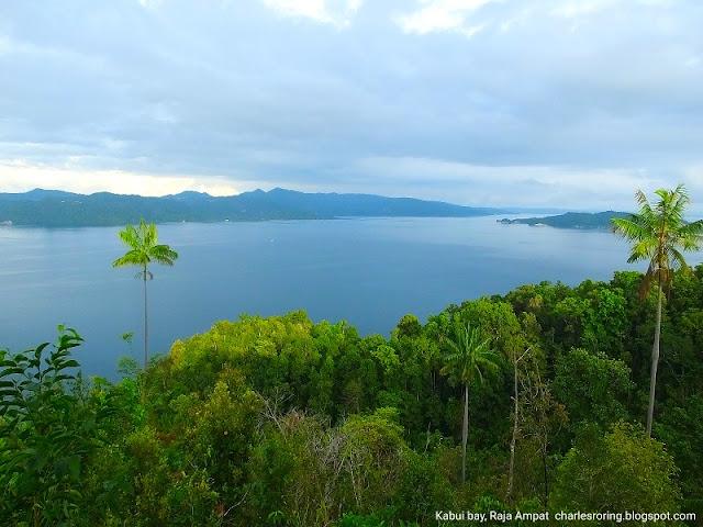 Kabui bay in Waigeo island of Raja Ampat
