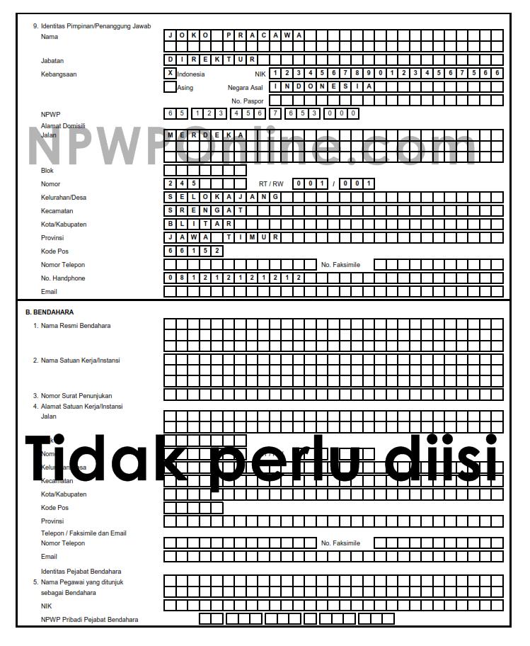 Cara Mengisi Kolom Identitas Penanggung Jawab di Formulir NPWP Badan Perusahaa