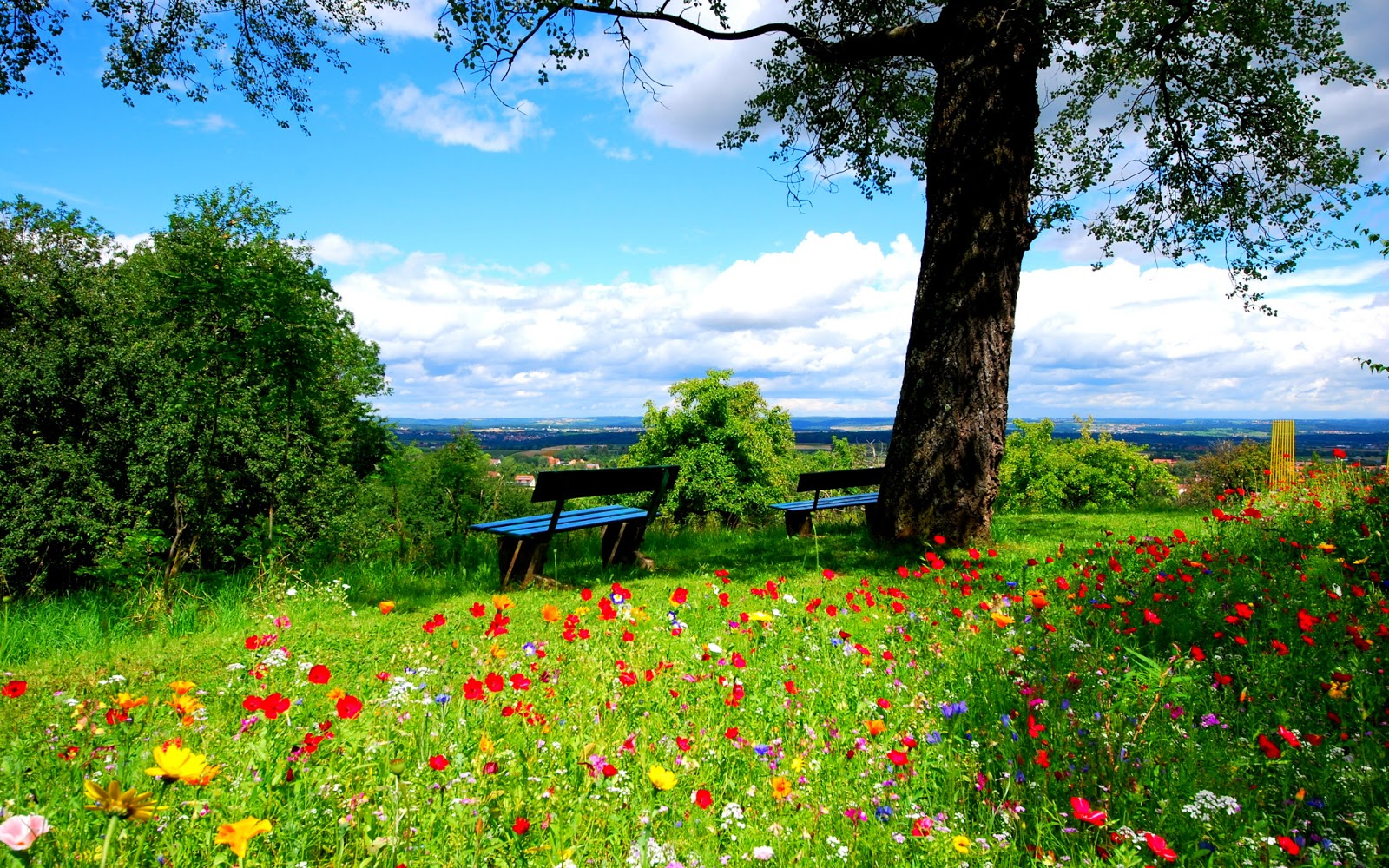 Spring Wallpapers HD | HD Wallpapers - Blog