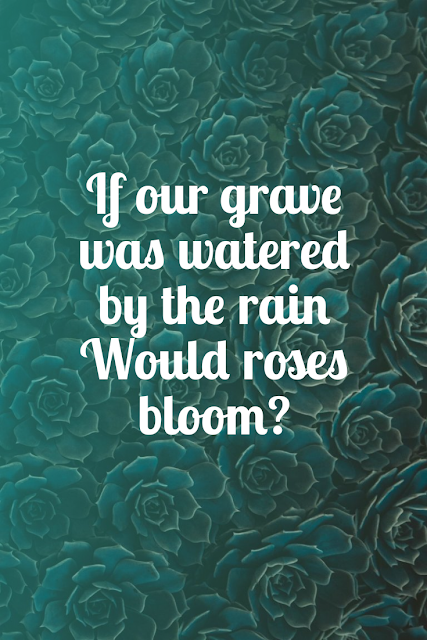 If our grave was watered by the rain  whould roses bloom??