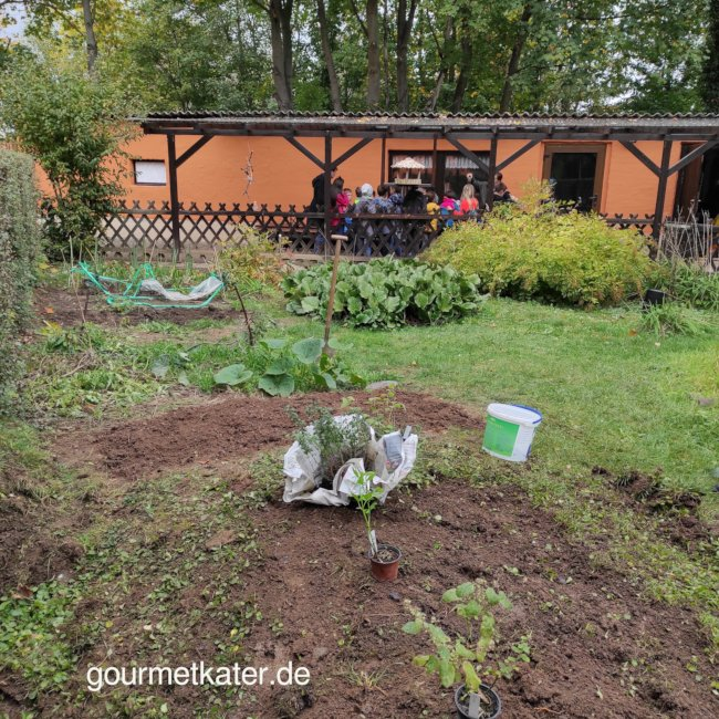 Chancenpatenschaften im Garten